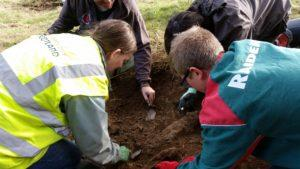Volunteers digging in the former cemetery